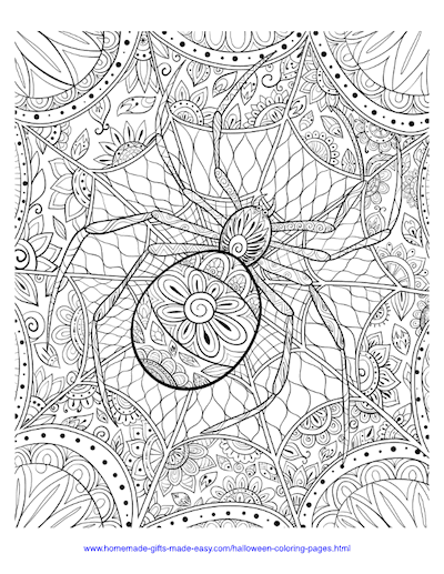 Spider Webs | printable cute halloween coloring pages for adults | pumpkin halloween coloring pages for adults